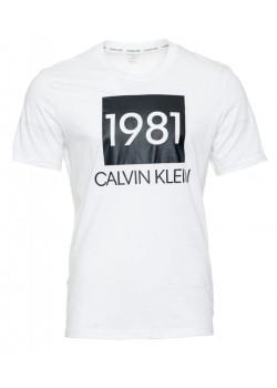 Pánske tričko Calvin Klein NM1708E